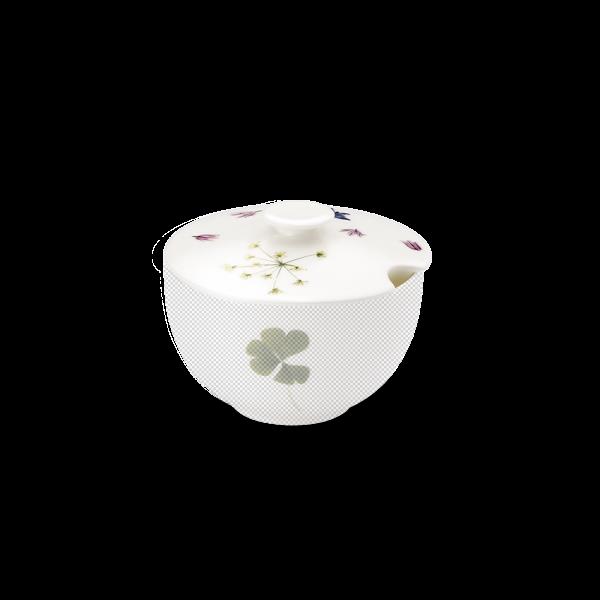 Lid of sugar bowl round